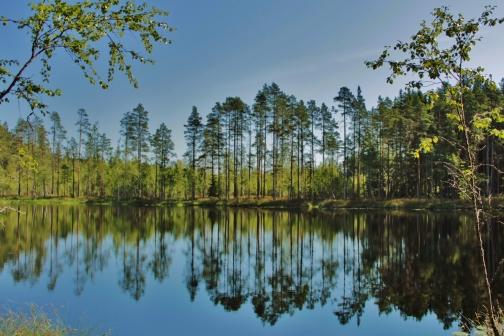 Finnland, wie ich es mir immer erträumt habe: Still, wild und grün.