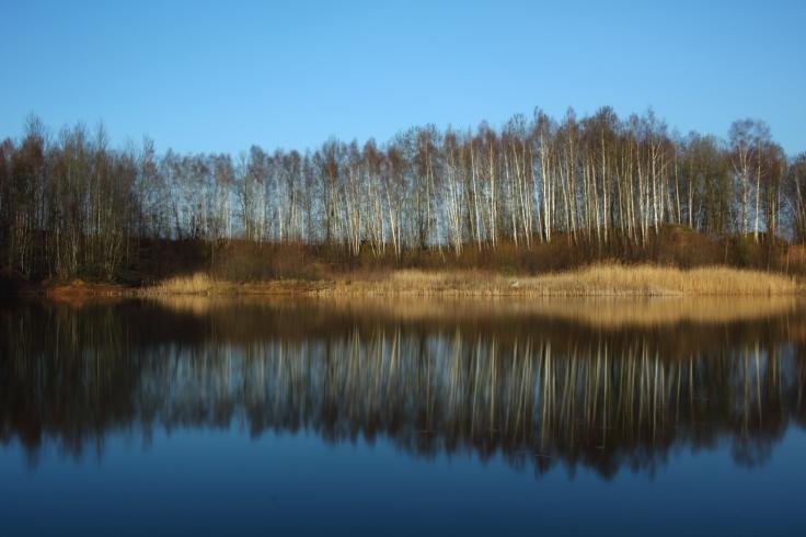Spiegelbild im See